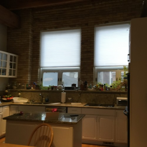 Chicago Lincoln Park Old Banjo Factory turned Townhouse- before photo
