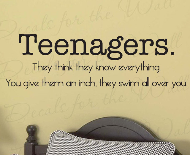 wall sticker decal quote vinyl art removable teenagers little