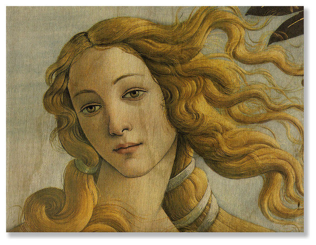 the birth of venus sandro botticelli Sandro botticelli with regards to botticelli's panel work, like most italian panels of the period, the support was poplar coated with gesso on this the contours of the figures were established by a careful under-drawing in charcoal, done freehand without a cartoon, and the architectural features were indicated by incised lines made with a stylus.