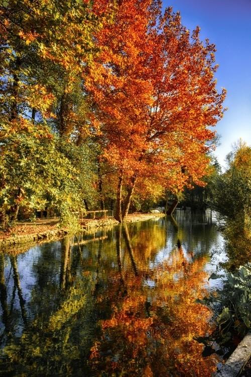 """""""Colours of Autumn"""" Photo Print, Aluminium, 40x30 cm"""
