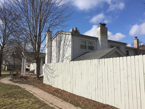 What Color Should I Paint My Fence Best Idea Garden