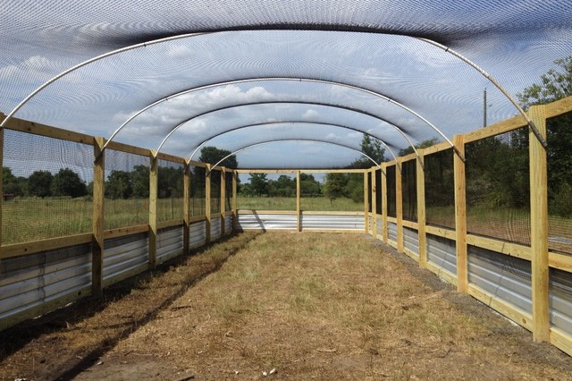 Quail flight pen houston by harkey fencebuilding ranch for Building a quail house