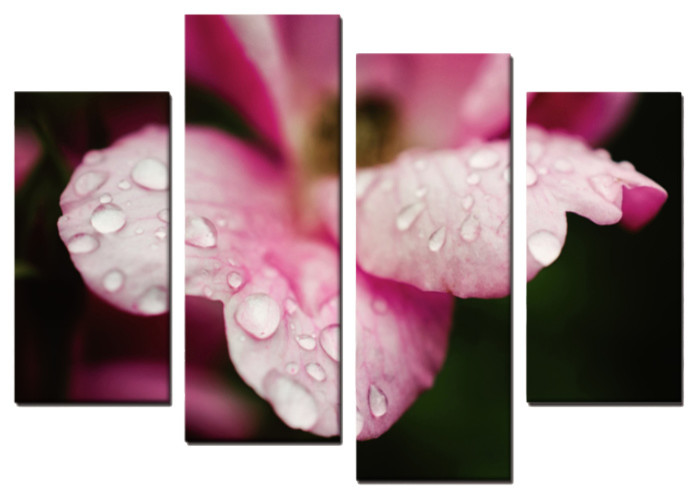 Raindrops On Wild Rose 4 Piece Panels Canvas Prints Wall Art Symmetrical Contemporary Prints And Posters By Pi Photography Wall Art Fine Art
