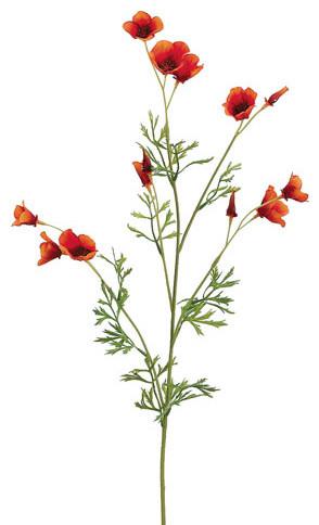 Silk plants direct mini california poppy pack of 12 traditional silk plants direct mini california poppy pack of 12 orange mightylinksfo