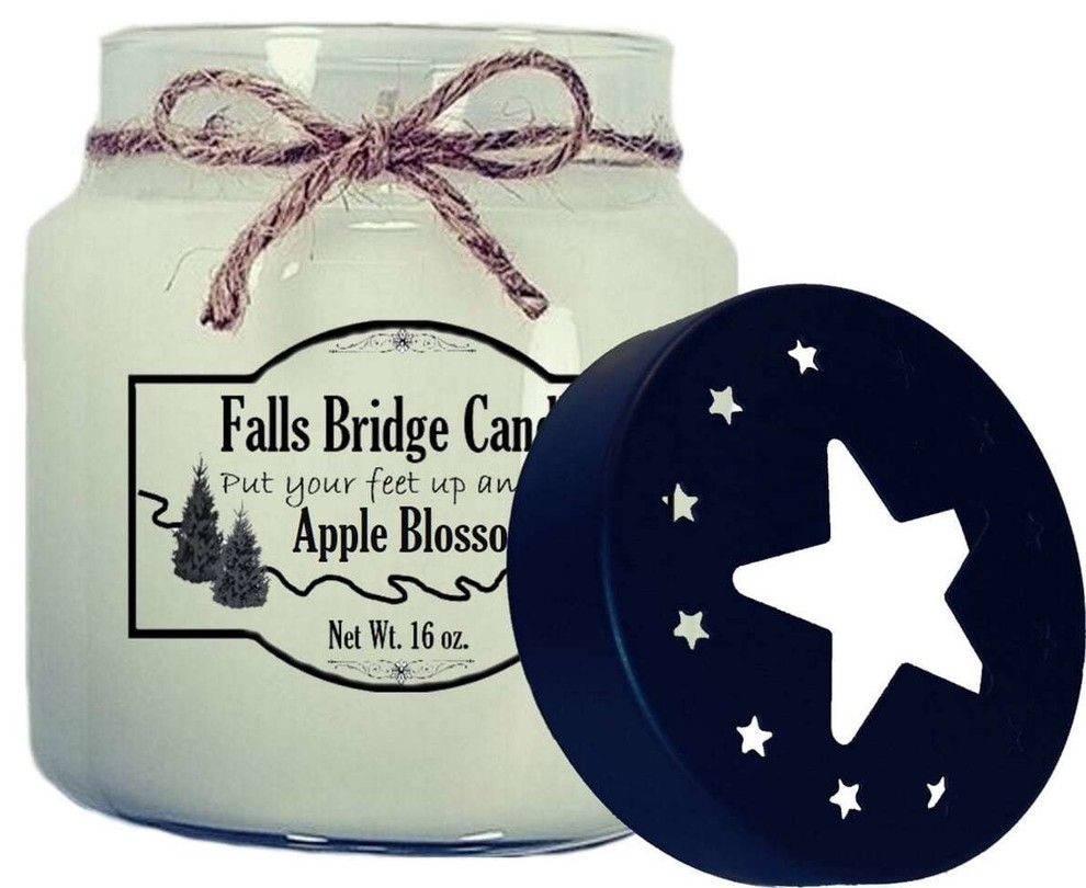 Gift Ideas Wax Melts Mason Jar Scented Candle Top Selling HARVEST BERRY Soy Candle Farmhouse Decor All Natural