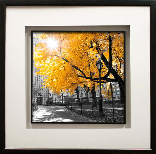 """""""park Pretty Ii"""" Artwork By Assaf Frank, With Double Molding, Black, 29""""x29""""."""