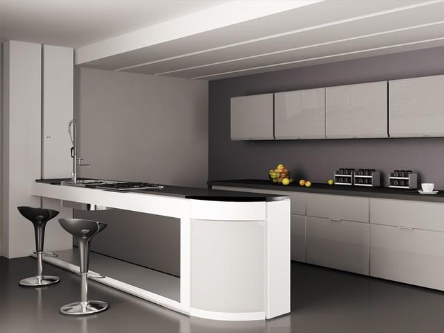 contemporary kitchen cabinet door styles - Contemporary Kitchen Cabinet Doors