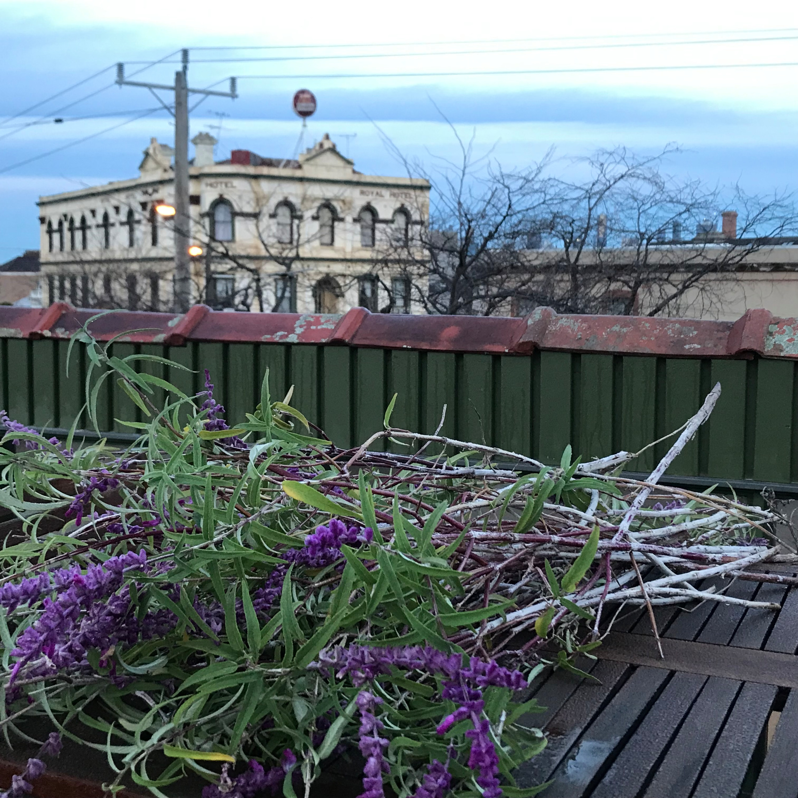 Clifton Hill 'Welkin', Colourful Rooftop Terrace