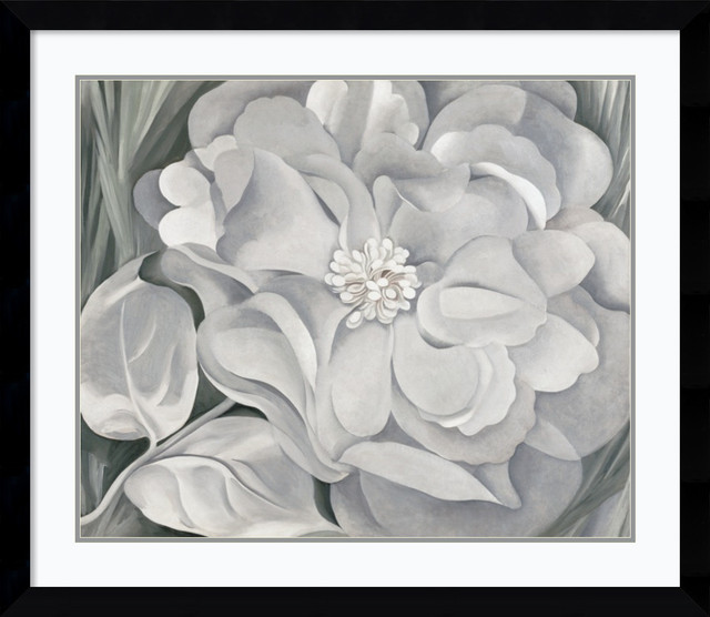 The White Calico Flower, 1931 Framed Print by Georgia O\'Keeffe ...