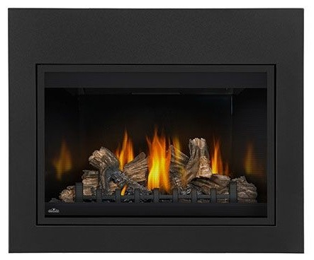 Napoleon Bgd36cfntresb Top/rear Vent Clean Face Fireplace With Black Door.