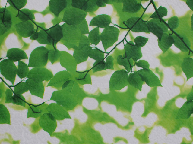 """Chois 571 Static Film Home Plant Decals Glass Window Films Stickers, 35""""."""