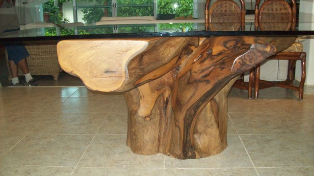Tree Root Table Base 1 : tropical from www.houzz.com size 640 x 360 jpeg 64kB