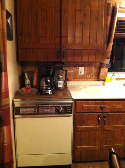 what kind of cabinets to replace old dishwasher with?