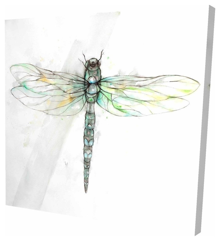 Dragonfly Illustration Print On Wrapped Canvas Contemporary Prints And Posters By Begin Edition