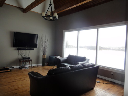 Need Help With Living Room Space