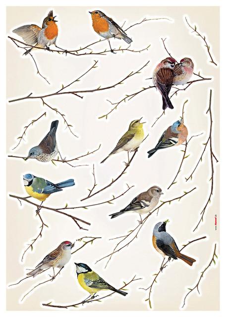 Birds Wall Decals
