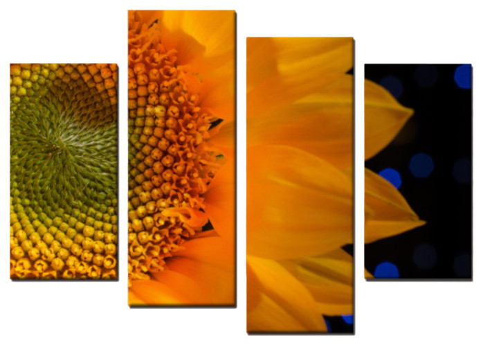 Close Up Sunflower 4 Piece Panels Canvas Prints Wall Art Set Symmetrical Farmhouse Prints And Posters By Pi Photography Wall Art Fine Art