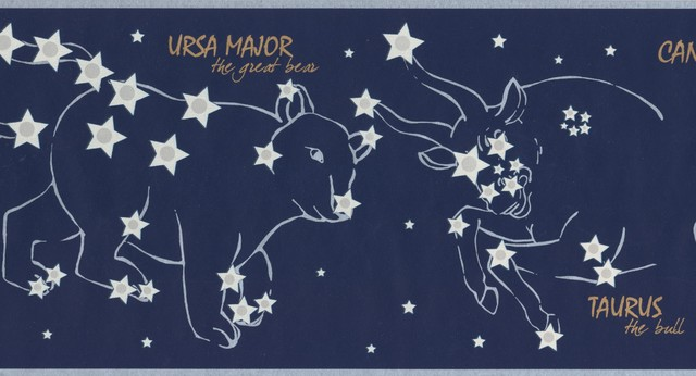 Night Sky With Marked Constellations Stars Navy Blue Wallpaper Border For Kids