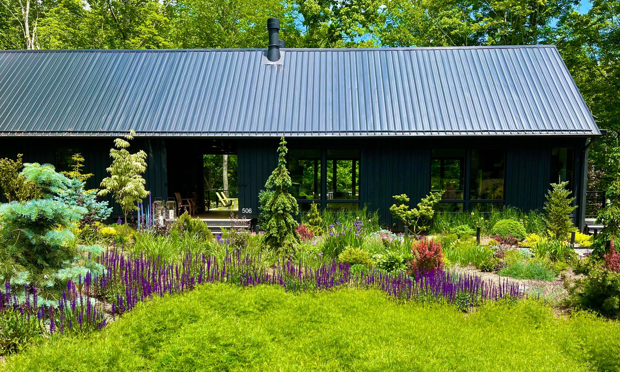 Front Garden, June, 2021.
