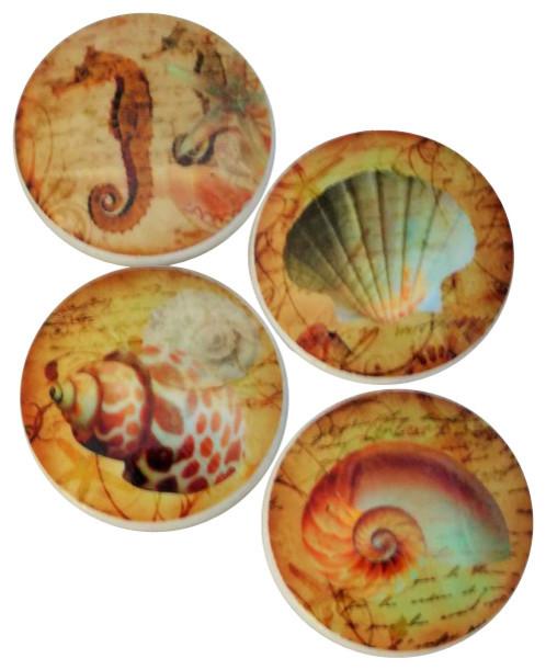 Nautilus Seashell Oversized Cabinet Knobs, 4 Piece Set, Tan Beach Style