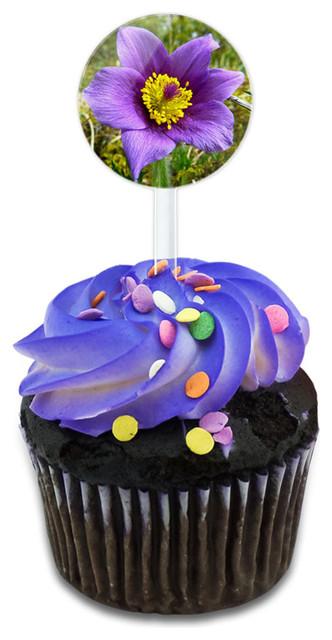 Pasque Flower South Dakota State Flower Cupcake Toppers Picks Set.