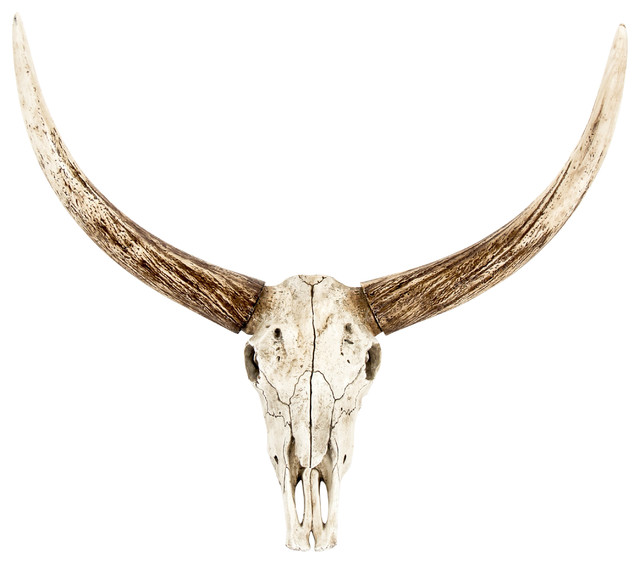 Bull Skull Wall Decor bull skull wall decor - southwestern - wall sculptures -