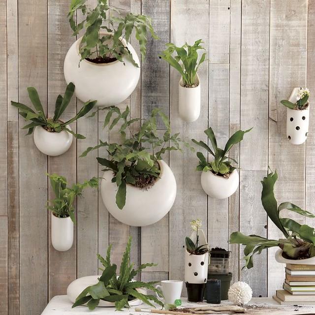 Shane Powers Ceramic Wall Planters