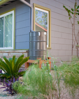 Rain Barrel by Green Water