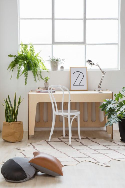 plantes studio