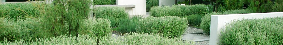 Mark newdick landscape architects wellington nz 6011 for Landscape architects wellington