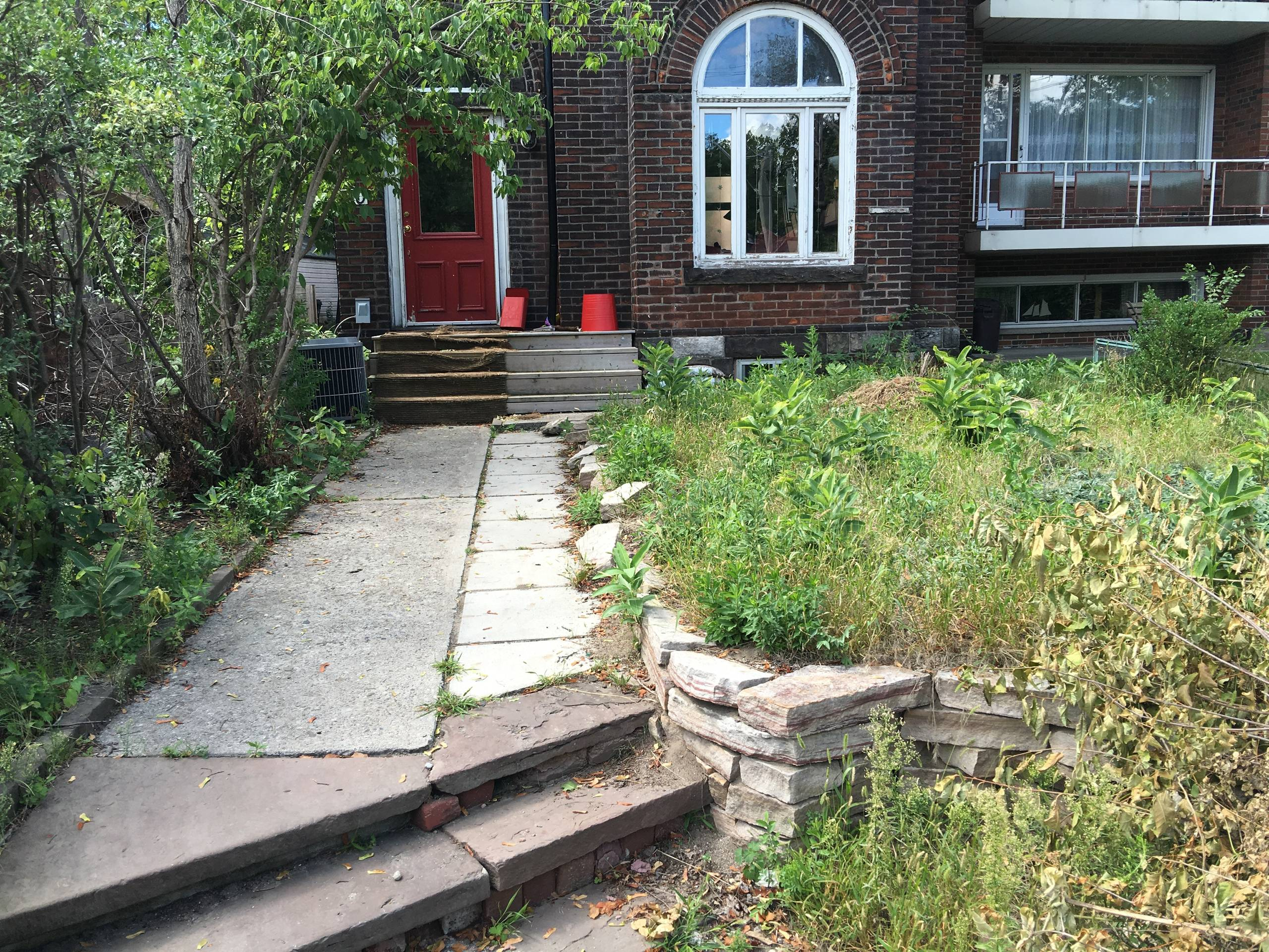 High Park Front Yard Before Picture