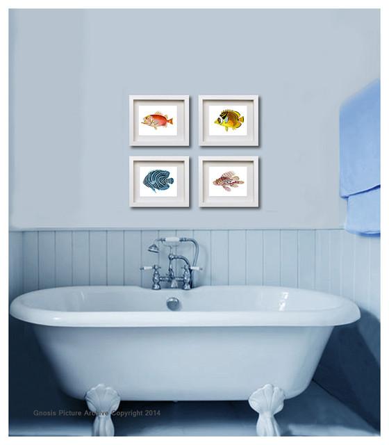 Set of 6 vintage fish bathroom decor wall art prints 8x10 for Bathroom design for 8x10 room