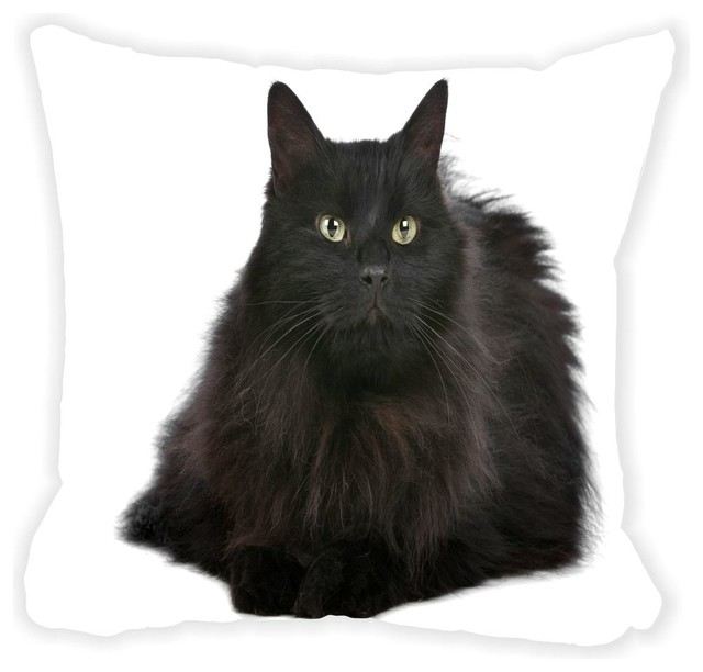 Black Microfiber Throw Pillows : Fluffy Black Cat With Yellow Bright Eyes Microfiber Throw Pillow 16