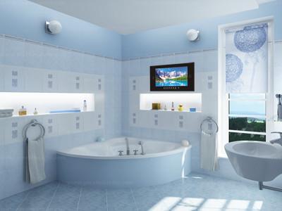 Bathroom With Tv Home Design