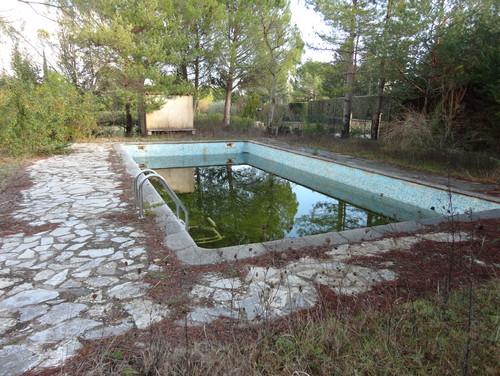 From defunct pool to magic zen retreat help with ideas pls for Zen pool design