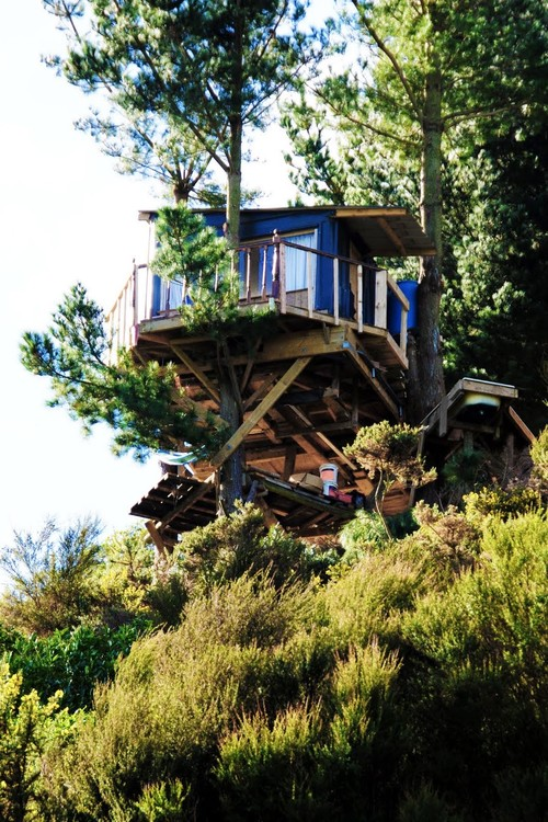 Tree houses to send your spirits soaring