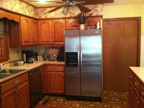 Need Help With My Kitchen Remodel