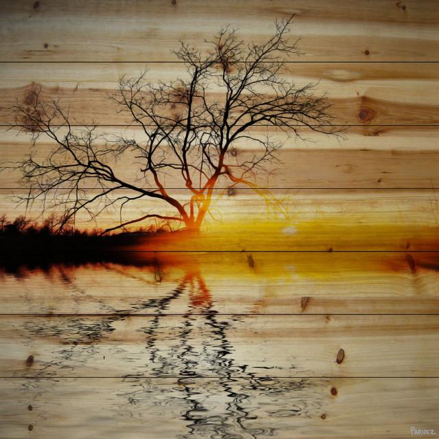 """Killaloe"" Print on Wood by Parvez Taj, 80x80 cm"