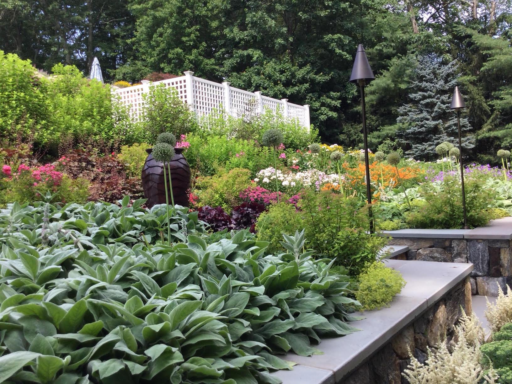 Pollinator Garden in Pound Ridge 2021