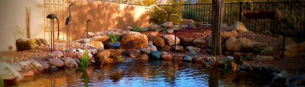 Pondscapes Queen Creek Az Us 85142