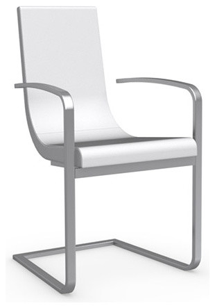 Cruiser Leather Arm Chair With Cantilever Base, Chrome Frame, Set Of 2  Modern