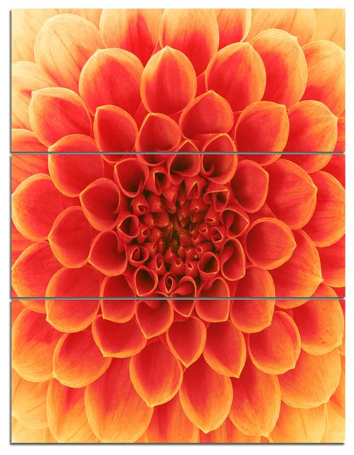 abstract orange flower design contemporary metal. Black Bedroom Furniture Sets. Home Design Ideas