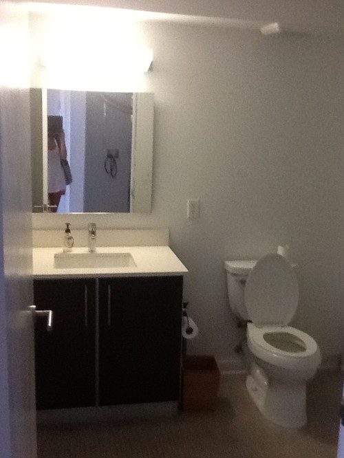 Help With Bathroom Paintdecor Colors