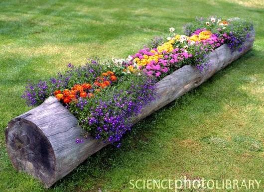 log flower planter.jpg