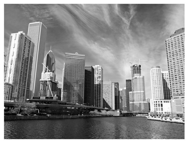 Chicago Skyline Wall Mural, Black and White, 400x309 cm