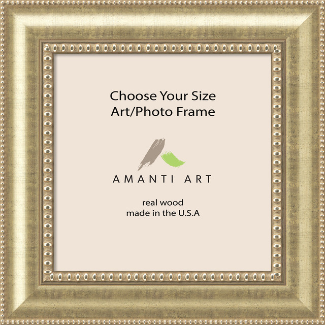 Art, Photo Frame, Astoria Champagne, 16x16 to 16x47 - Traditional ...
