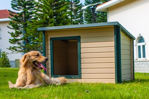 Flat Or Pointed Roof For Dog House