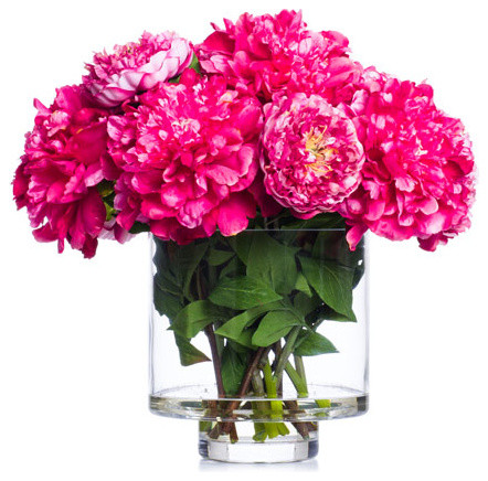 Hot pink peonies in footed cylinder contemporary artificial hot pink peonies in footed cylinder mightylinksfo