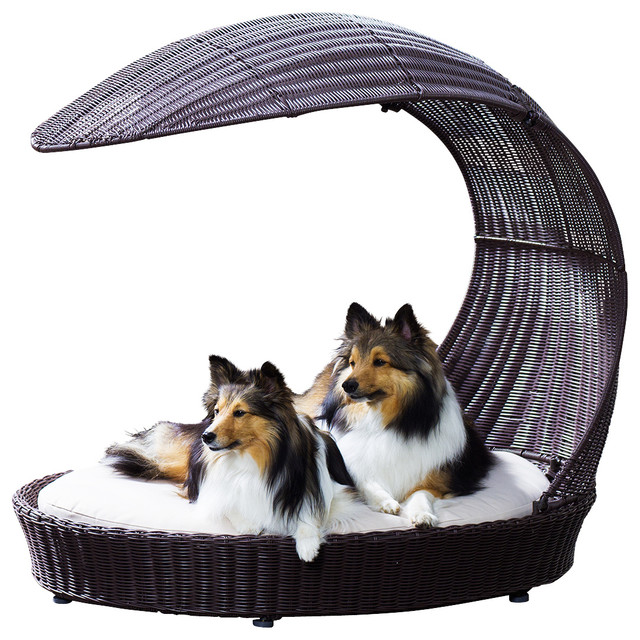 Outdoor Dog Chaise Lounger Contemporary Dog Beds By