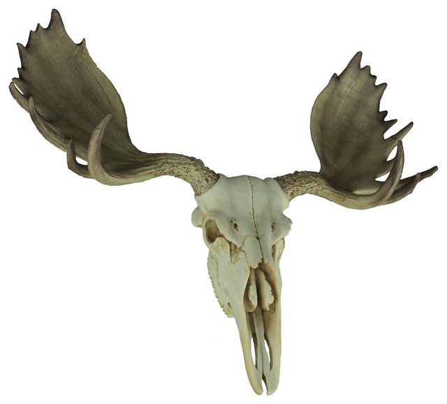 Large Lifelike Bull Moose Skull Hanging Wildlife Decor